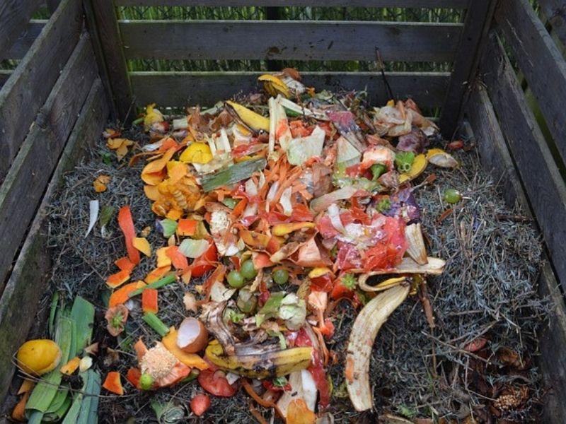 Komposztálással jelentősen csökkenthetjük a konyhai hulladékot!